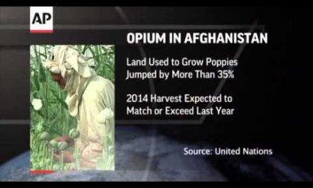 US fails to stem Afghan opium tide