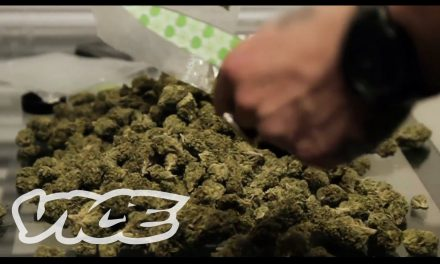 Inside the Canadian weed business