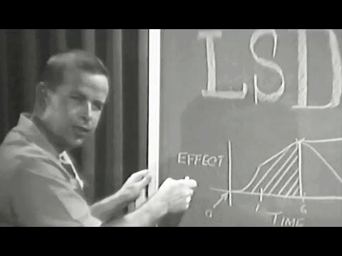 US Navy training film on LSD