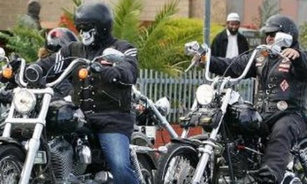 What motorcycle gangs most remind me of