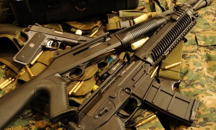 Fraud, guns, and our insane government