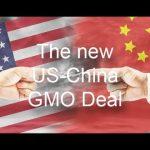 The secret China-US GMO deal