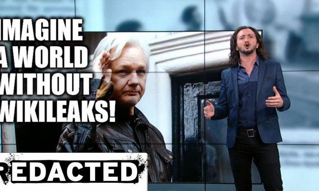 The massive contributions of Julian Assange