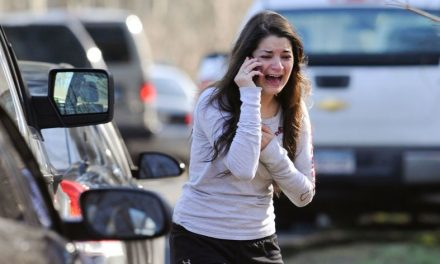 The Sandy Hook story does not add up